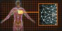 Gry PC - Vademecum - Mass Effect 2 - Ulepszenia pancerzy - Ci�ki splot skóry